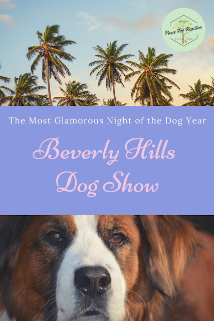 The Beverly Hills Dog Show airs tonight!