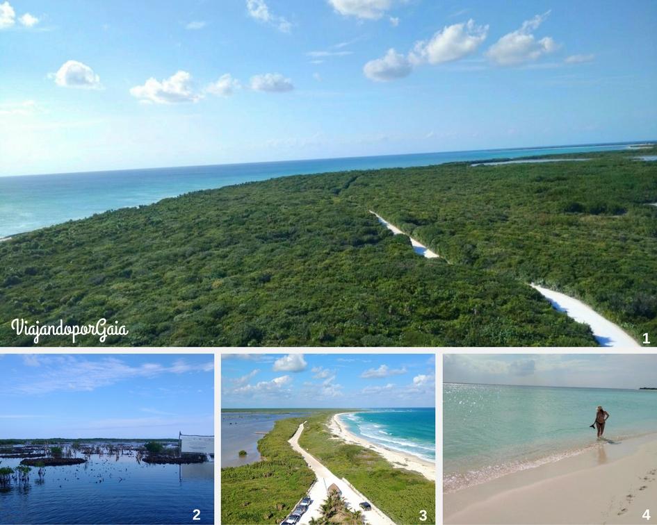 1. Vista de Punta Sur desde el faro Celarain 2. Restauración y conservación del Manglar en el parque ecológico Laguna Colombia 3. Panorámica de Punta Sur desde el faro, se aprecian lagunas, manglares y el mar caribe 4. La playa más hermosa.
