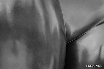 At Fernando Botero: una celebración (Palacio de Bellas Artes, México), by Guillermo Aldaya / AldayaPhoto