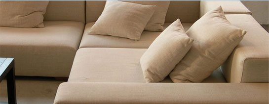 How To Get Rid Of Harmful Allergens That Hidden Beneath Your Couch