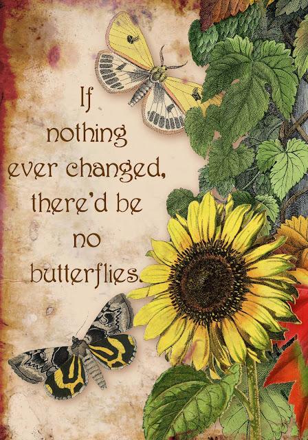 https://1.bp.blogspot.com/-WDzOLOvFUqQ/XSVXVh7VhtI/AAAAAAAAEBY/_NMf0doFWbEzBrEg3_IU5x8UEXG0HtY_gCLcBGAs/s640/Butterflies%2Band%2Bflowers2.jpg