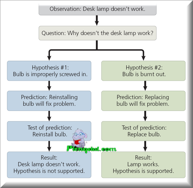 "Figure A simplified view of the scientific process. The idealized process sometimes called the ""scientific method"" is shown in this flow chart, which illustrates hypothesis testing for a desk lamp that doesn't work."