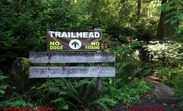 Cascade Head Natural Area Oregon