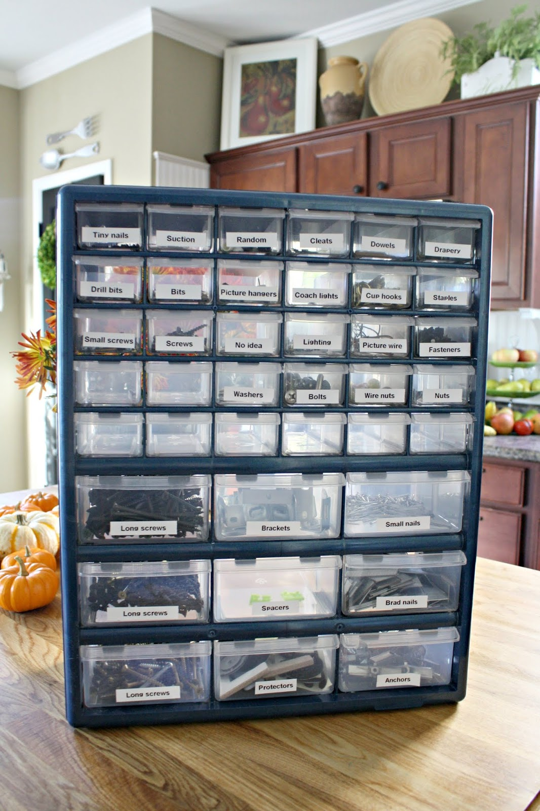 Perfect organization for small hardware like screws and nails