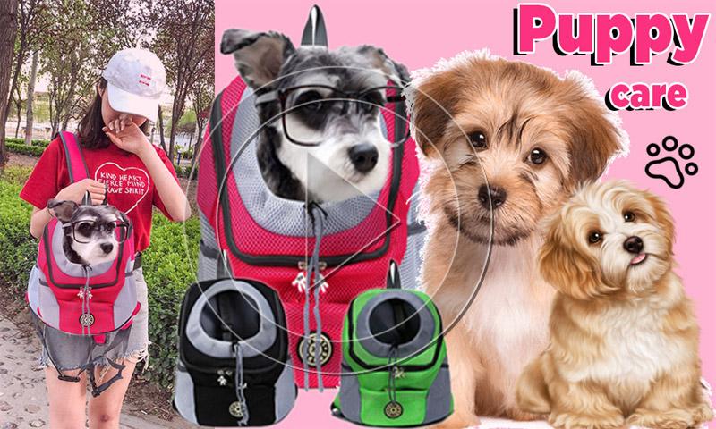 puppy carrier outdoor