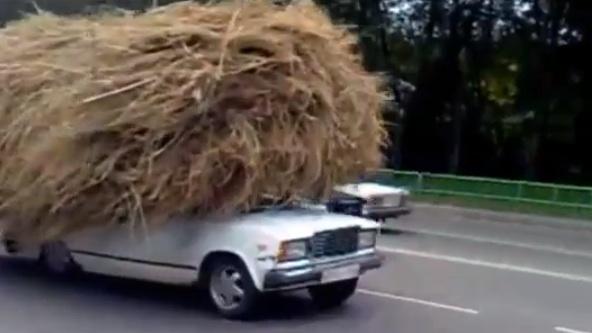 Russian b ys in the car