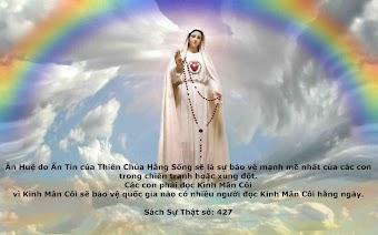 Xin mọi người đọc một kinh Kính Mừng vì lòng yêu mến Mẹ Maria xin Mẹ cứu giúp chị Maria Vui trong cơn gian nan khốn khó