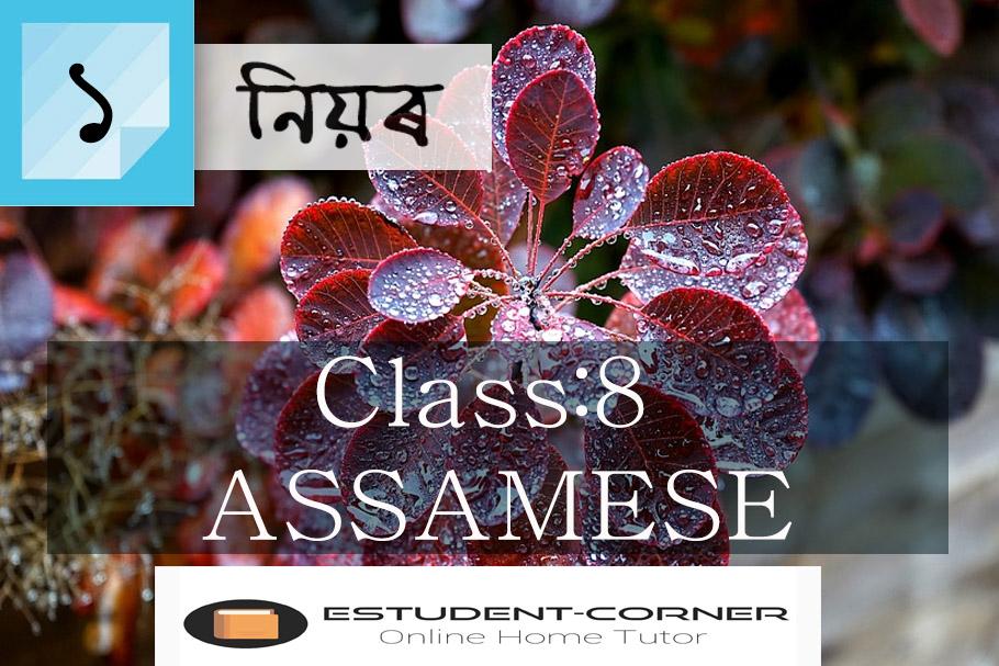 নিয়ৰ || পাঠ ১ || অসমীয়া || অষ্টম শ্ৰেণী || Class 8 Assamese Questions & Answers || Lesson 1 || Niyor