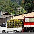 Pertamina Dituding Tak Tegas Hadapi Agen LPG Subsidi Nakal Di Kabupaten Sukabumi