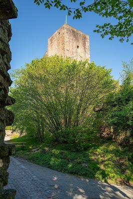 Premiumwanderweg Murgleiter | Etappe 1 von Gaggenau nach Gernsbach | Wandern nördlicher Schwarzwald 12