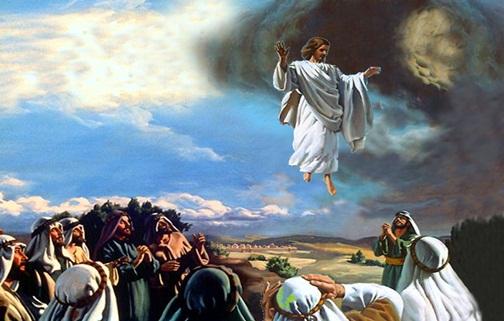 Disse-lhe Jesus: Na Casa de Meu Pai há Muitas Moradas