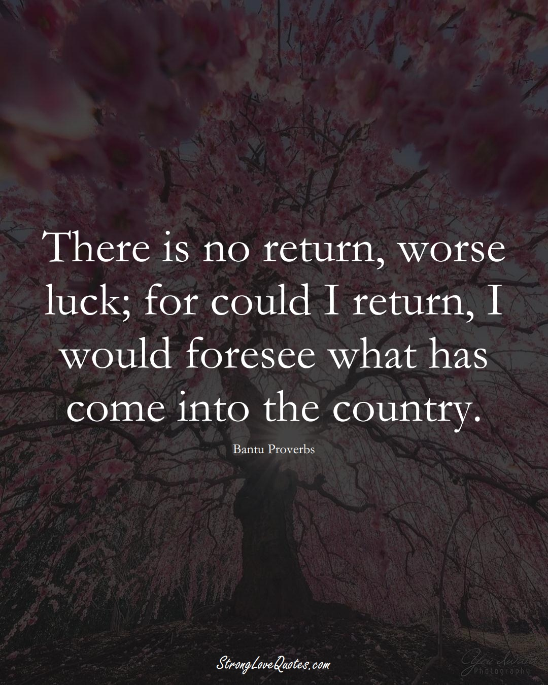 There is no return, worse luck; for could I return, I would foresee what has come into the country. (Bantu Sayings);  #aVarietyofCulturesSayings