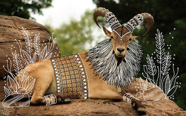 Animals Drawn in Traditional Dress By Rohan Sharad Dahotre