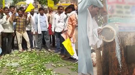 मप्र में सुर्ख हुआ किसान आंदोलन: नरसिंहपुर में सब्जियां फैंकी, रायसेन में दूध चढ़ाया