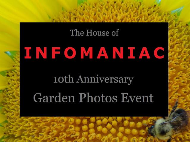 Infomaniac Garden Photos Event