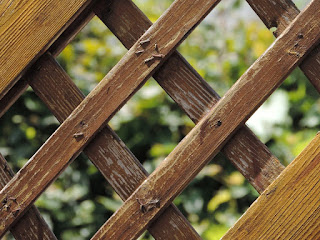 cara-perawatan-pagar-kayu.jpg