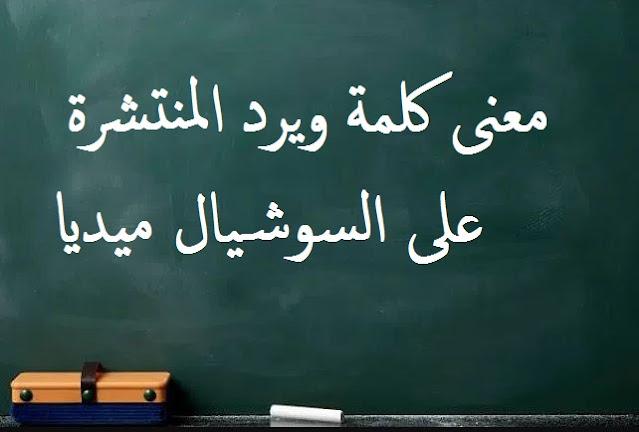معنى Weird life بالعربية  - معنى ويرد