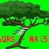 第二次投资凭单,小刀据大树 - GBGAQRS-WA (5226WA)