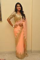 Bhanu Shri looks stunning in Beig Saree choli at Kalamandir Foundation 7th anniversary Celebrations ~  Actress Galleries 016.JPG