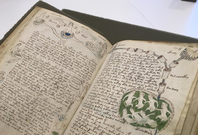 Menukrip Voynich Buku Paling Misterius Di Dunia