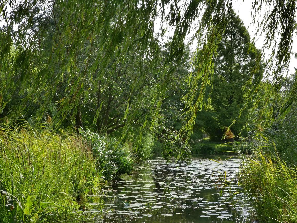 Loki Schmidt Garten
