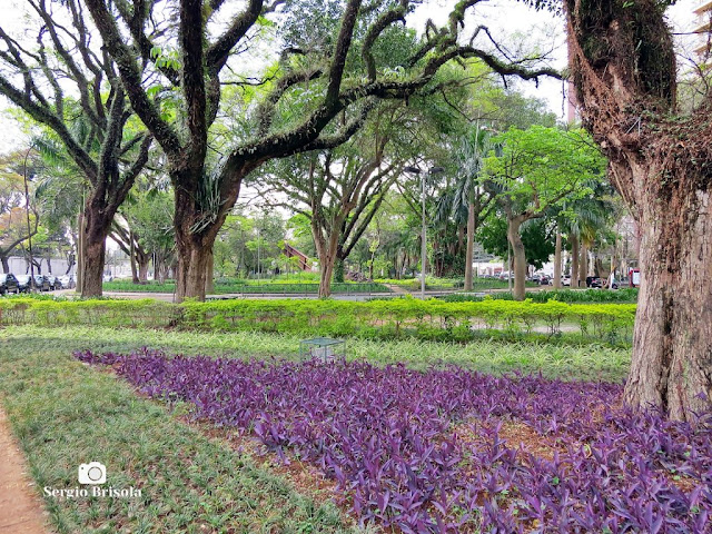 Vista da Praça Carlos Gardel - Vila Mariana - São Paulo
