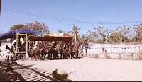 Dengar Isu Ada Orang yang Ingin Bubarkan Pacuan Kuda, Politisi PPP Ini Tebar Ancaman di FB