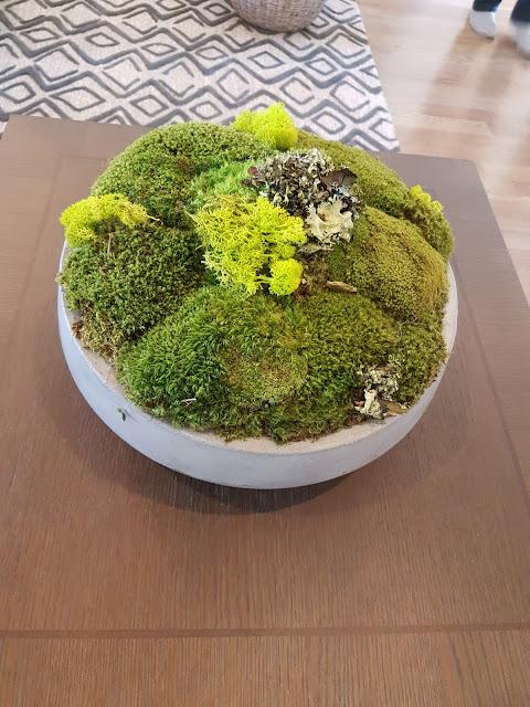 moss bowl decor