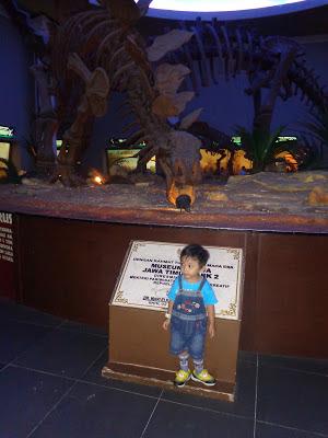 kerangka dinosaurus musium zoo