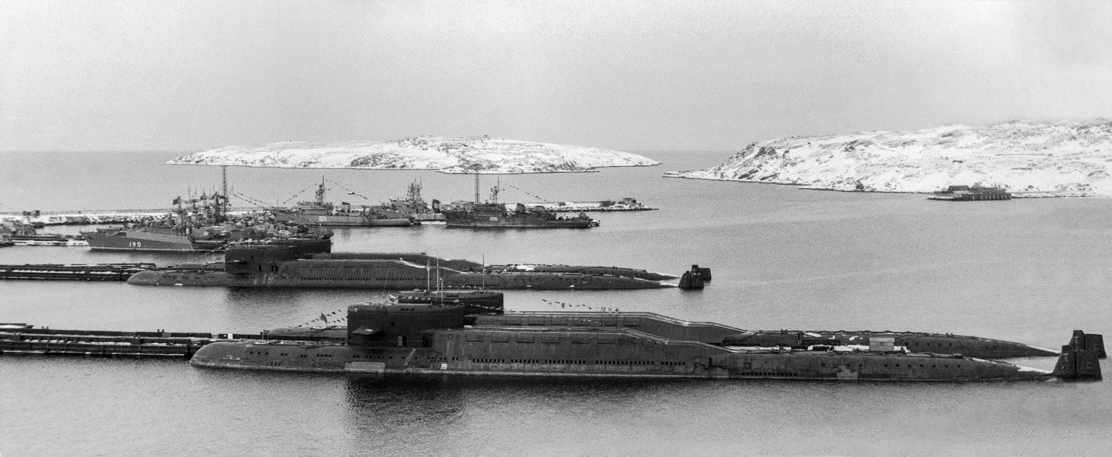 последовательность фото гремихи базы российского флота тигренок обои