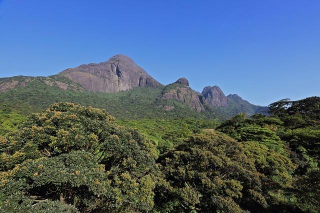 Agasthyakoodam Trek in Kerala