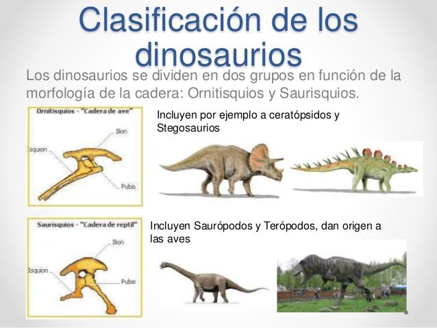 Dinosaurios Y Vida Prehistorica Los Dinosaurios Es estos pequeños dinosaurios ornitisquios no estaban relacionados con las aves y la similitud de sus huesos del pie se explica mejor por la. dinosaurios y vida prehistorica los