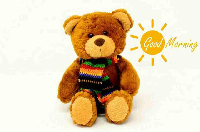 beautiful good morning pic of a cute teddy bear