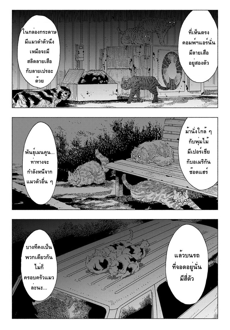 อ่านการ์ตูน Nyaight of the Living Cat ตอนที่ 4 หน้าที่ 14