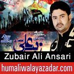 http://www.humaliwalayazadar.com/2016/06/zubair-ali-ansari-nohay-2011-to-2017.html