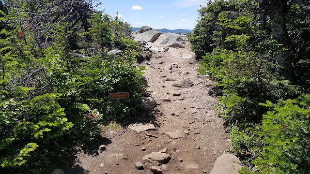 Arrivée au premier sommet du mont des Érables (Acropole des Draveurs)