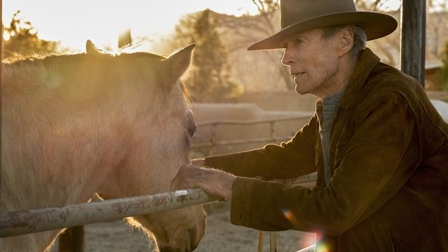 """CINEMA: Warner Bros. Pictures divulga vídeo especial sobre """"Cry Macho: O Caminho para a Redenção"""" (COM VÍDEO)"""