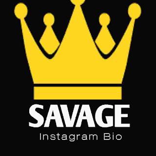 Savage bio for Instagram (2021Latest) - Cool savage bio ideas for Instagram