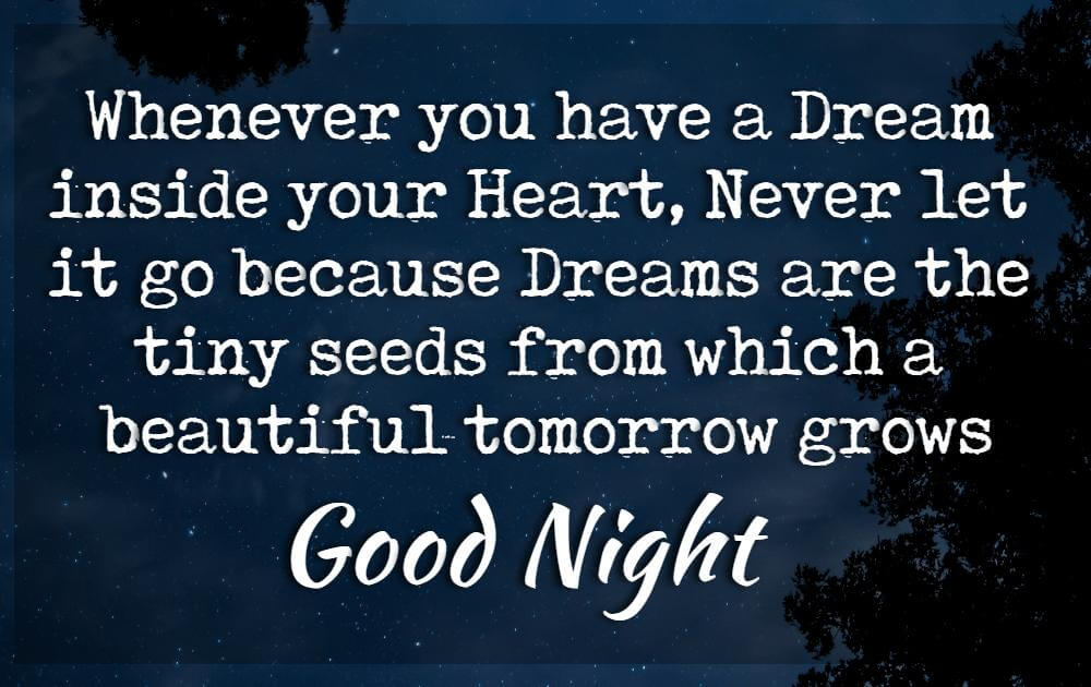 Good Night Quotes Wishes And Messages With Images