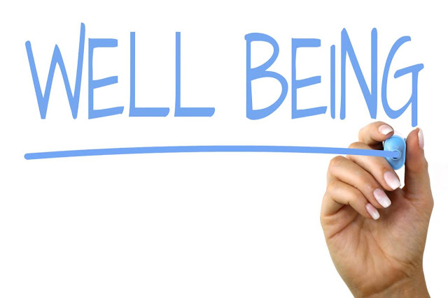 Well Being - What Causes It?