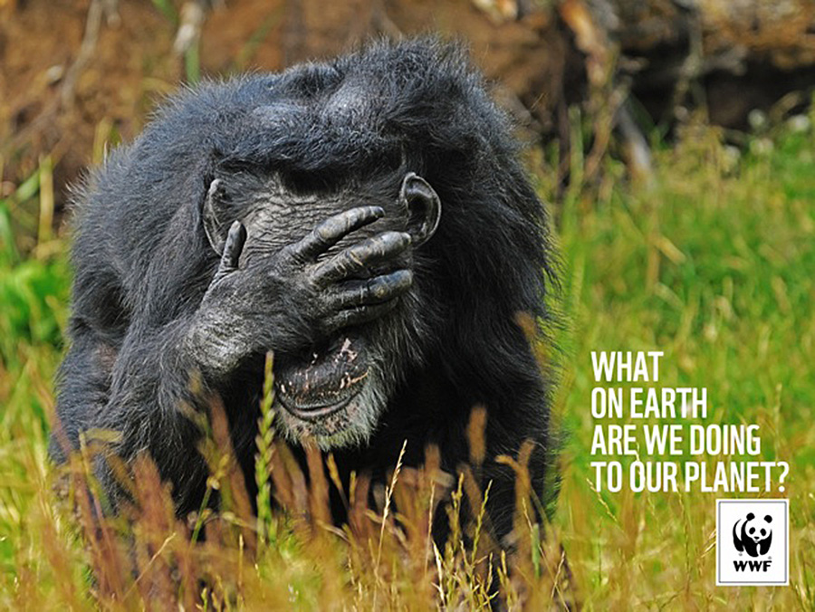 WWF - What On Earth Are We Doing To Our Planet? | AdStasher
