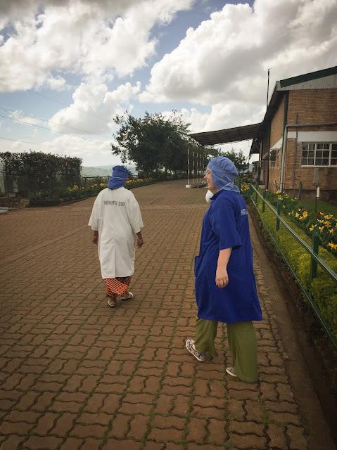 Sorwathe Tea Factory; Kinihira, Rwanda