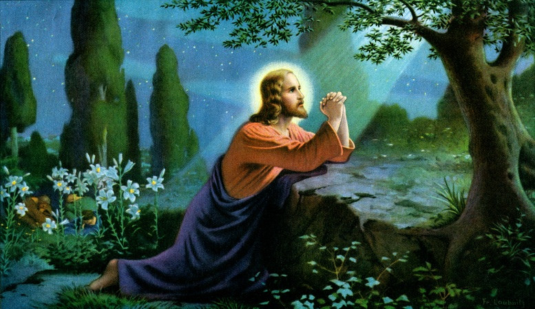 The agony of his heart in the garden of gethsemane first station Jesus praying in the garden of gethsemane