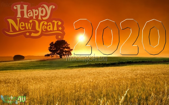 New Year 2020 Nature Images