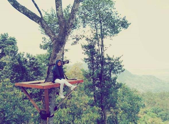 wisata brebes kalibaya park