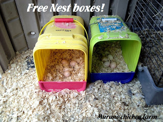 Cat litter pail reuse: nest box