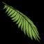 http://dontstarvefr.blogspot.fr/2016/06/objet-feuille-de-cocotier-palm-leaf.html
