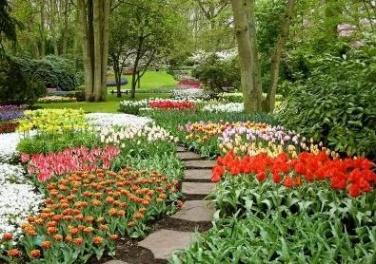 сад-выставка