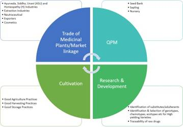 Launch-of-Consortia-for-Medicinal-Plants