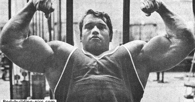 """ChAoS & PAIN: Arnold Is About As Much """"The Best"""